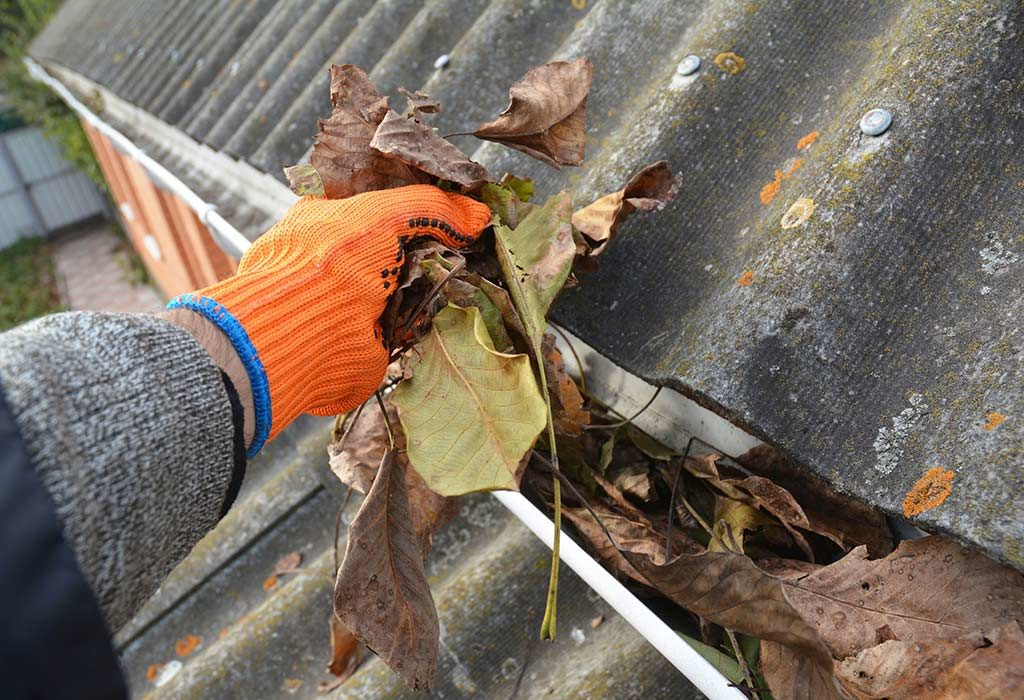 Commercial Roof Cleaning San Francisco, Gutter, Downspout ...